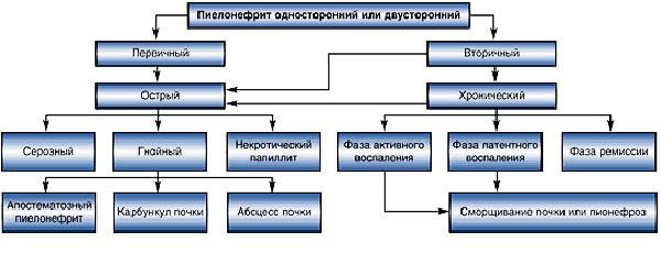 Формы пиелонефрита