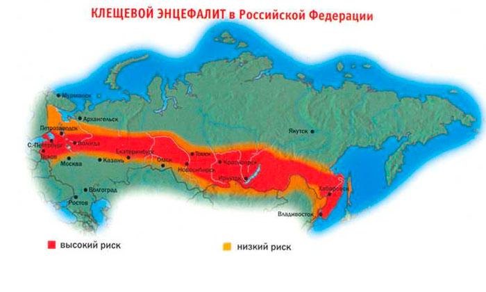 Распространение клещевого энцефалита в РФ