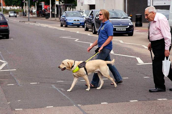 Даже простая прогулка для людей с проблемами зрения, становится тяжелой задачей