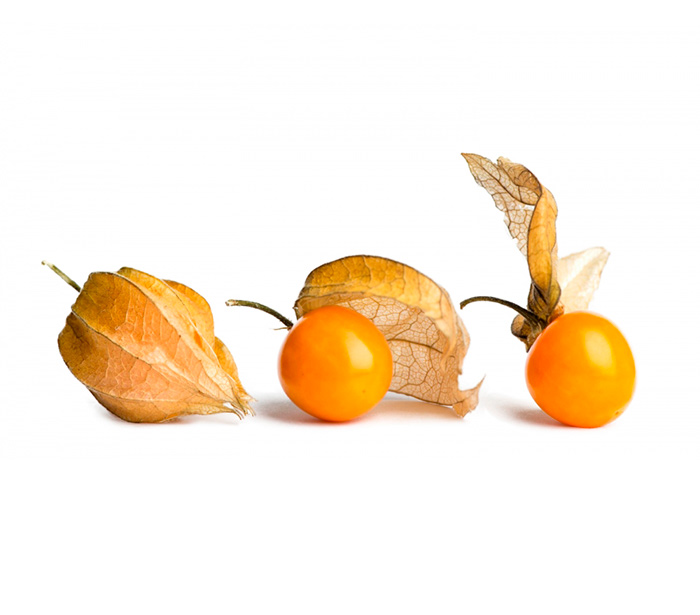 Плоды физалиса для лечения гигромы